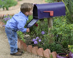Looking for Mail!
